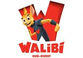 Entrée pour Walibi