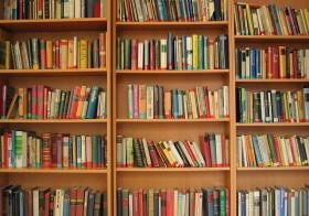 Vide-bibliothèque le 30 novembre 2014 à Layrac
