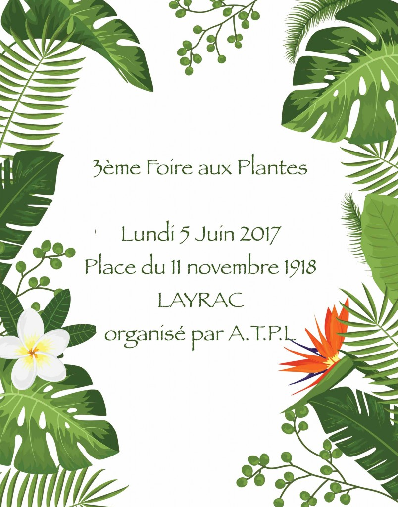 FOIRE AU PLANTES A LAYRAC